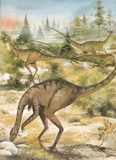 Ornithomimosaurs