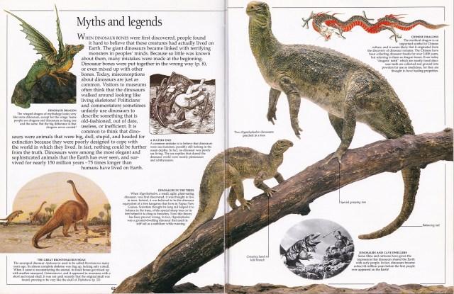 Eyewitness myths and legends
