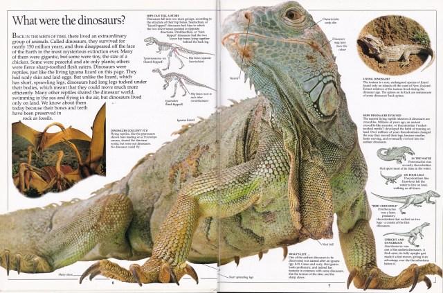 Eyewitness what were dinosaurs