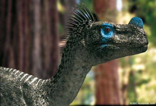 Walking With Dinosaurs Ornitolestes