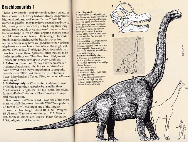 Field Guide Brachiosaurus