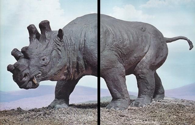 Uintatherium by Arthur Hayward