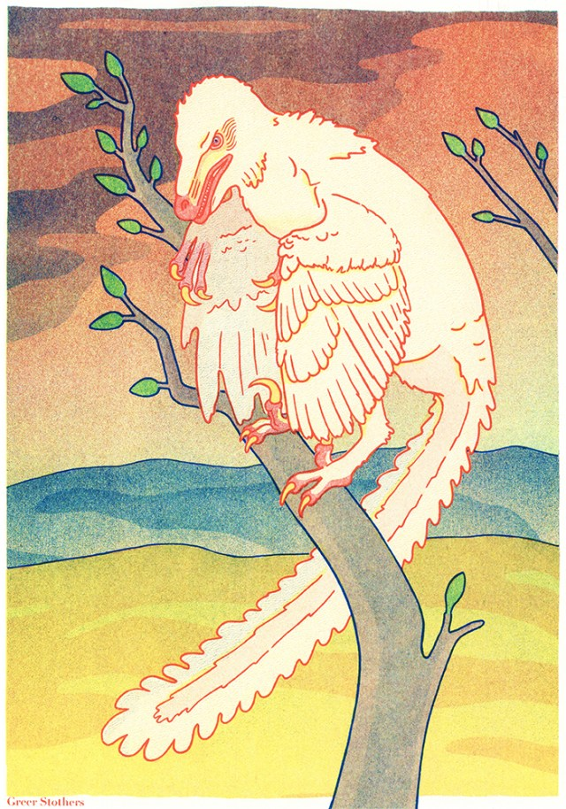 Risograph printed illustration of an albino Velociraptor perched in a small tree