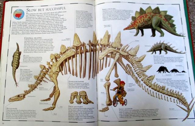 Great Dinosaur Atlas Stegosaurs
