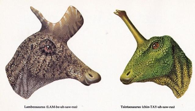 Lambeosaurus and Tsintaosaurus by Biruta Akerbergs