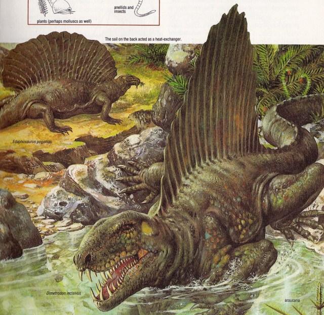 Dimetrodon by A Fedini