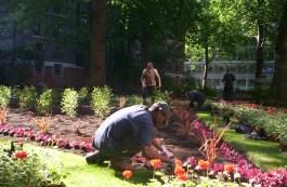 Gardeners Westminster 2
