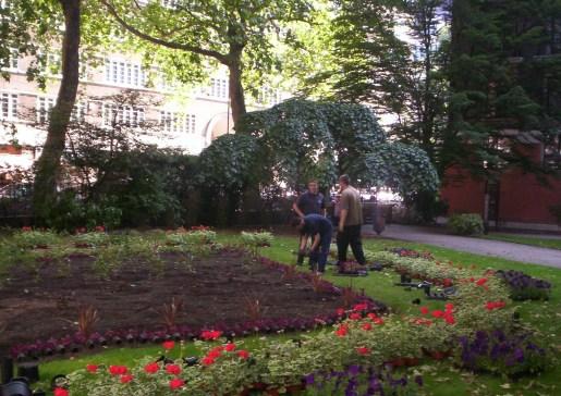 Gardeners Westminster 1