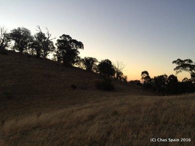 Sunset Mansfield 2