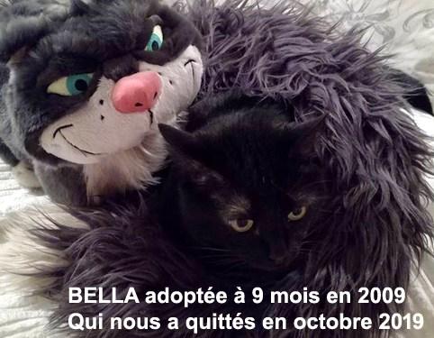 BELLA-2019-01