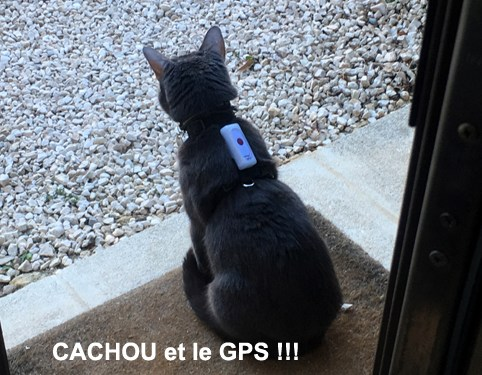 CACHOU-05