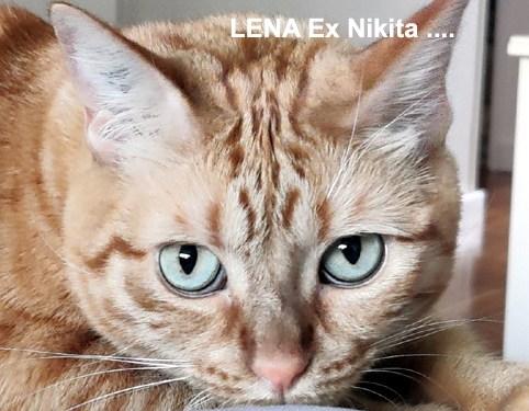 LENA-01
