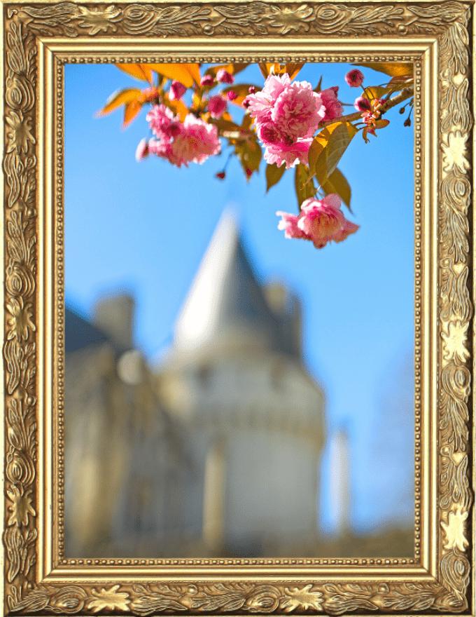 Billetterie château et jardin