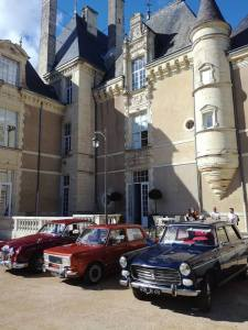 chateau de jalesnes loire valley france car show