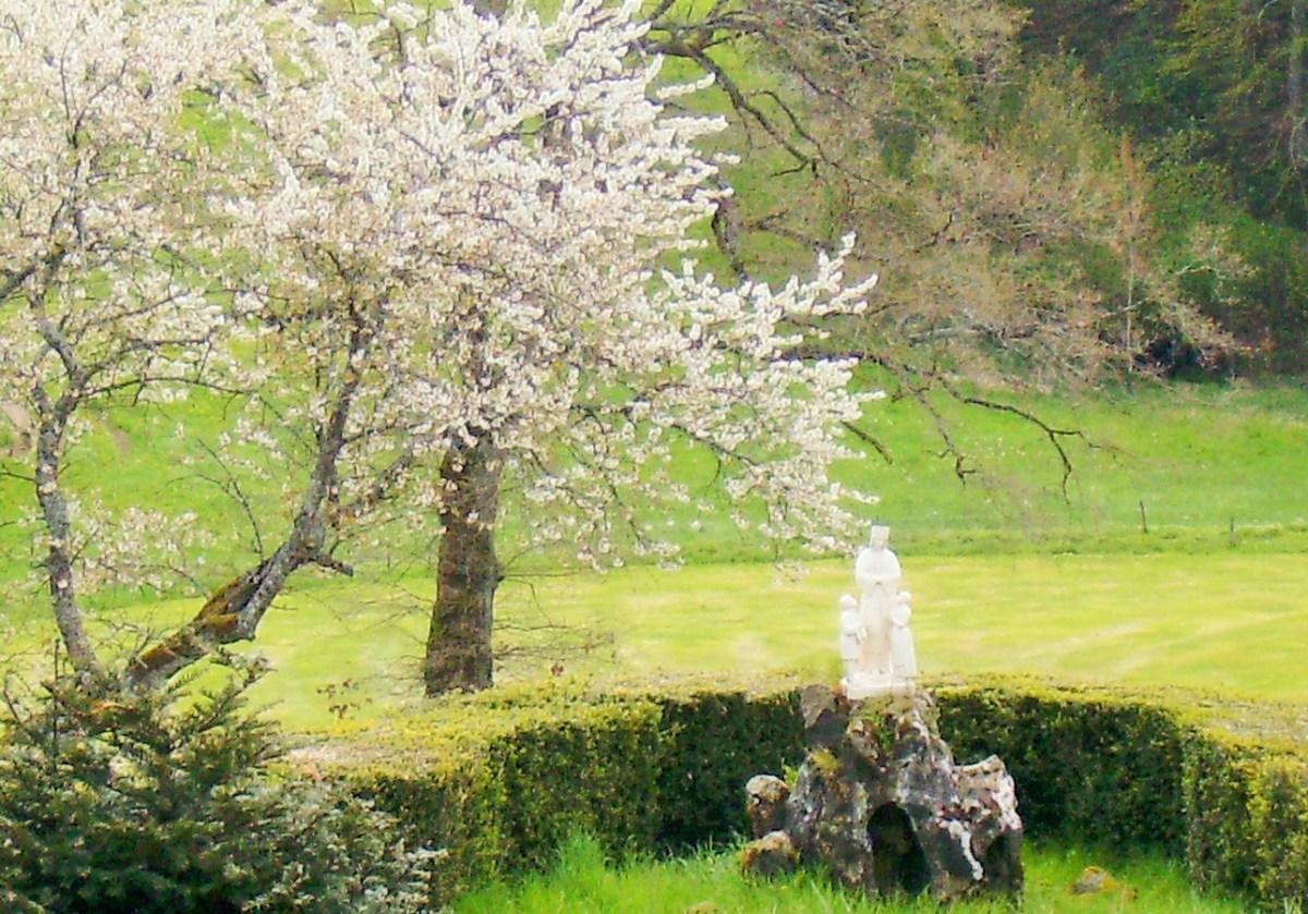 Saconay - La Salette en fleurs
