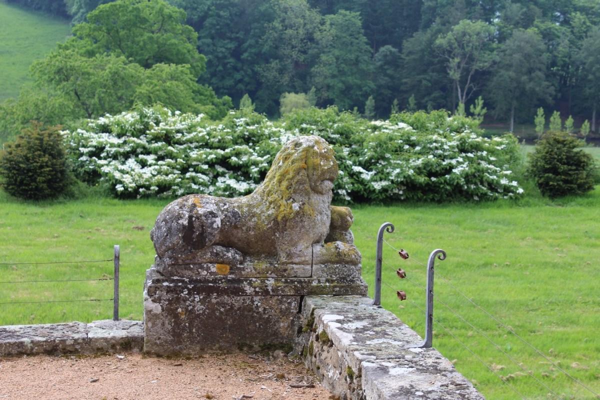 Saconay - Un des lions de pierre