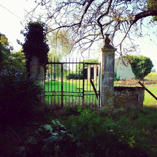A beautiful spare gate overgrown