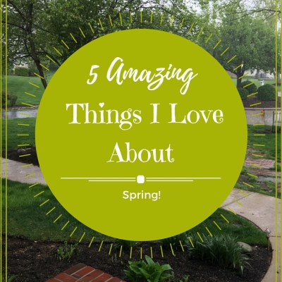 5 Amazing Things I Love About Spring!