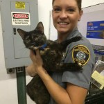 Chatham County Animal Services