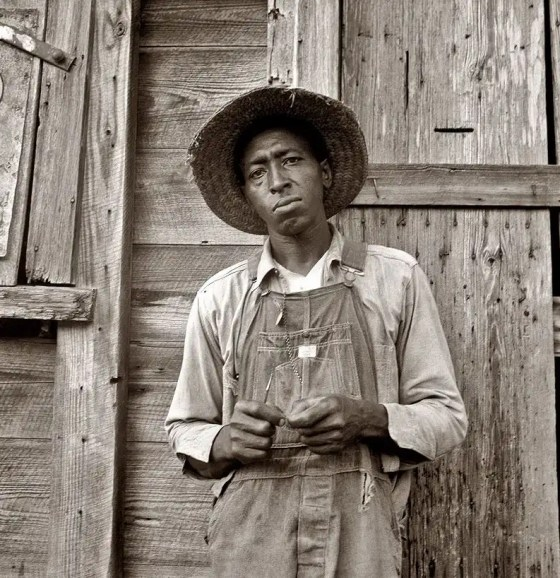 July 1939. Tenant farmer in Chatham County, North Carolina. Farm Security Administration photograph by Dorothea Lange.
