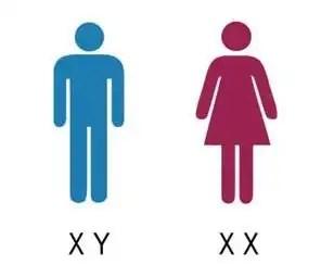 XY XX Bathrooms