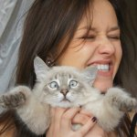 10 Reasons Why Cat Ladies Can Be a Perfect Girlfriend