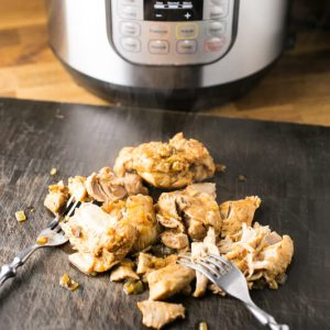 Slow cooker beer chicken is probably the best version of pulled chicken I could think of. It's delicious on its own or piled on a sandwich (or fries)! | Recipe from Chattavore.com