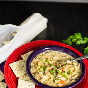 Creamy chicken noodle soup is a perfect way to warm up on a cold day. Plus...you can use your leftover turkey instead of chicken if you want!   chattavore.com