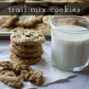 If you're looking for some amazing cookies to make this Christmas, here are 20 Christmas cookie recipes you can make!   Chattavore.com