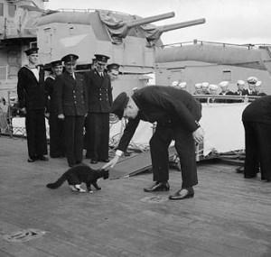 Überlebte 1941 total drei Schiffsuntergänge: «Unsinkable Sam»  tat als Schiffskatze bei Freund und Feind Dienst.