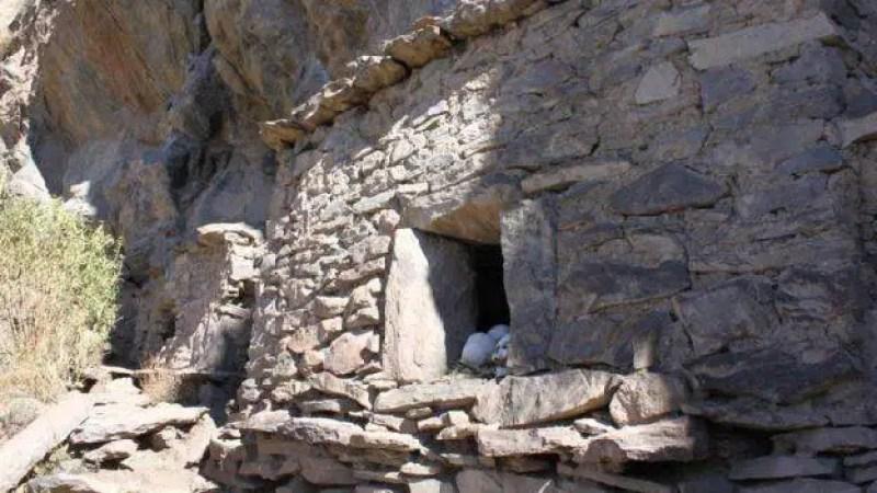 O estudo publicado na Current Anthropology envolveu a análise de centenas de restos de ossos humanos de túmulos no Vale do Colca.