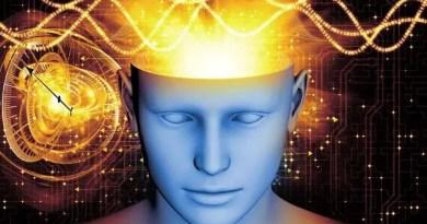 Senso magnético nos seres humanos