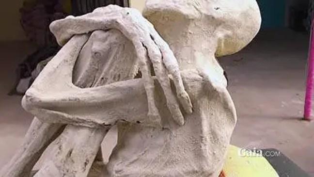 mumificado de um ser humanoide