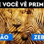 Qual primeira imagem que você vê: Zebra ou Leão?