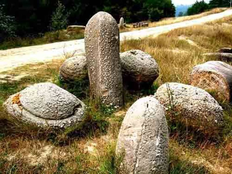 Trovants pedras que têm a capacidade de crescer e se mover