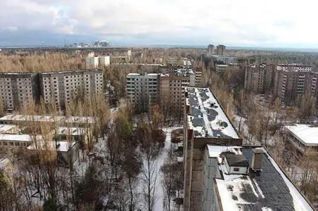 Borboleta mutante encontrada na zona de exclusão de Chernobyl
