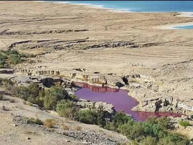 Água Do Lago Misteriosamente Ficou Vermelha Perto Do Mar Morto, Na Jordânia..