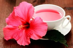Hibiscus bea pierdere în greutate)
