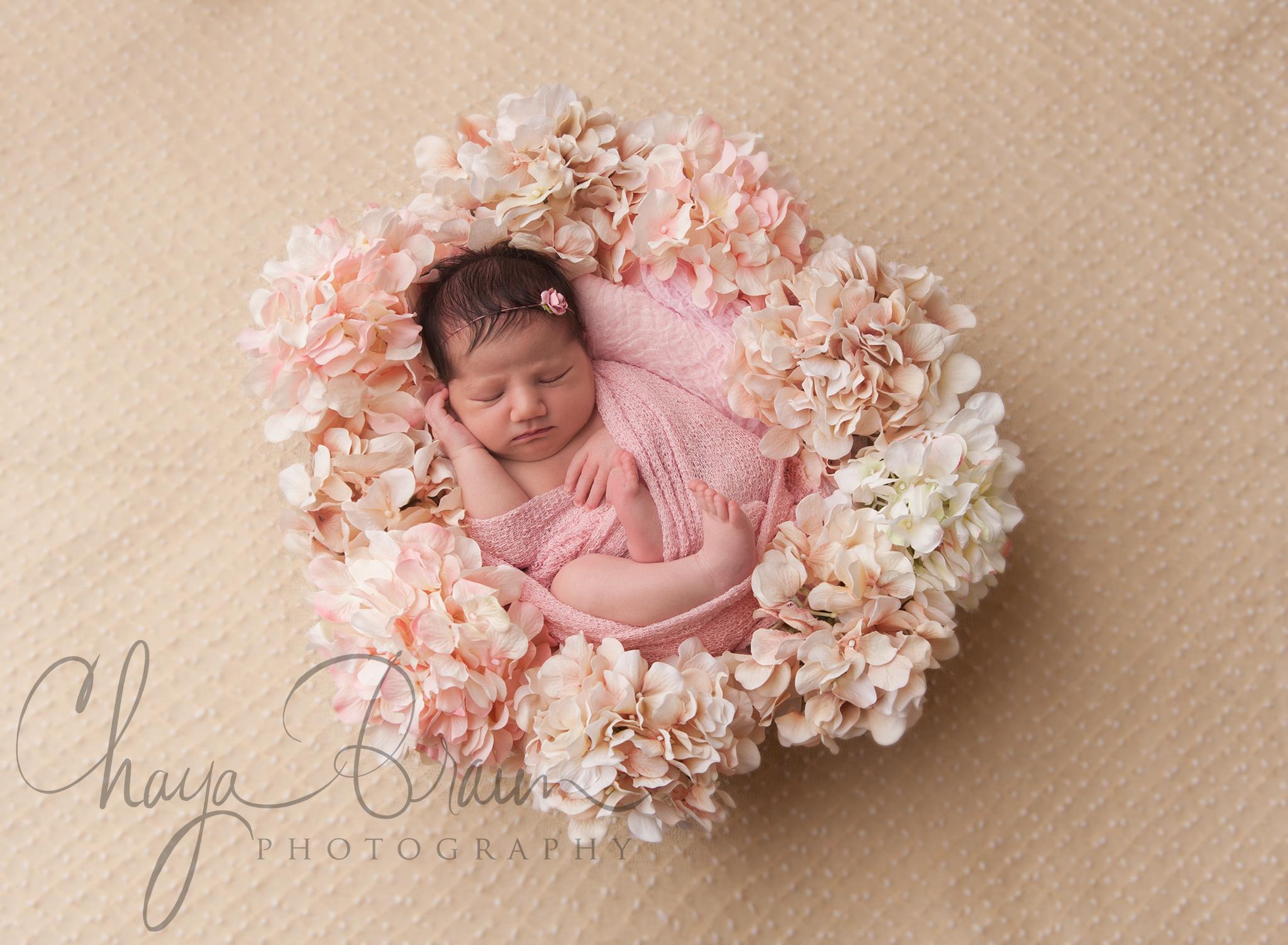 beautiful baby girl | chaya braun photography