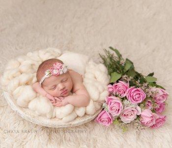 newborn baby photographer in Baltimore, Maryland