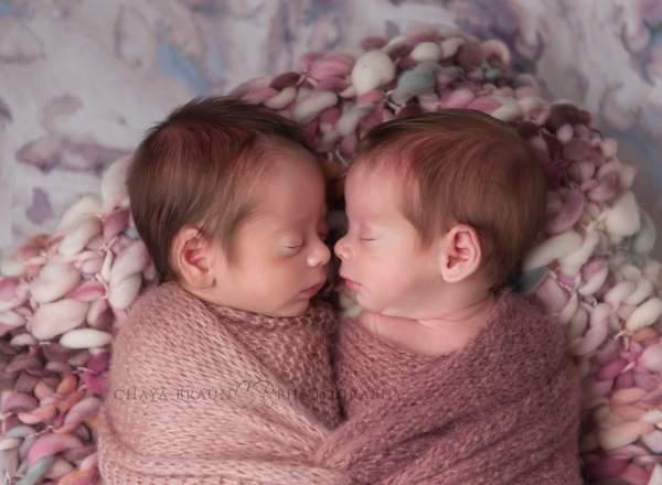 newborn baby twins photographer