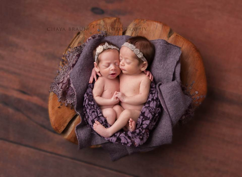 sweet newborn twin babies in Baltimore, MD
