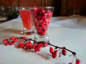 ягода красного барбариса