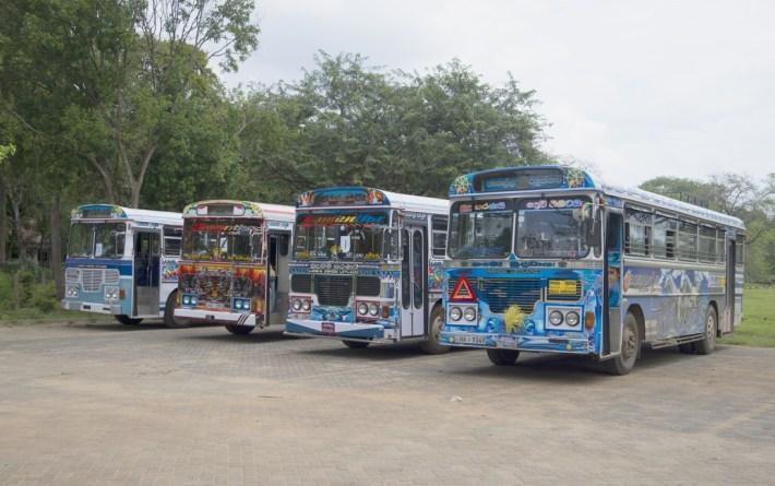 Tourist buses Lanka Ashok Leyland
