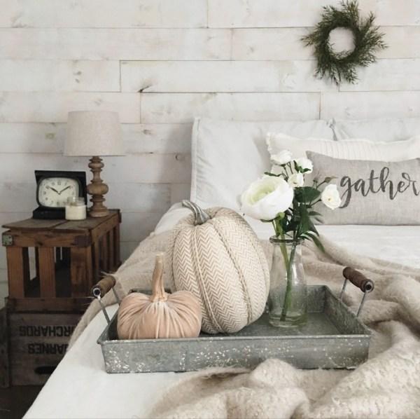 velvet pumpkin_27