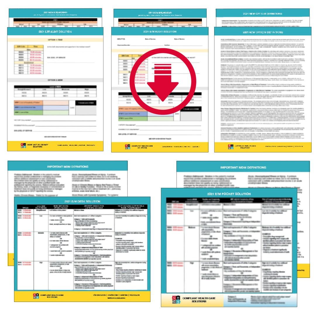 Full Bundle – Audit Solution + Definitions + Pocket Solution + Desk Solution + Audit Solution Worksheet Digital Download