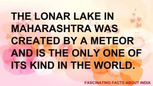 fascinating fact 11