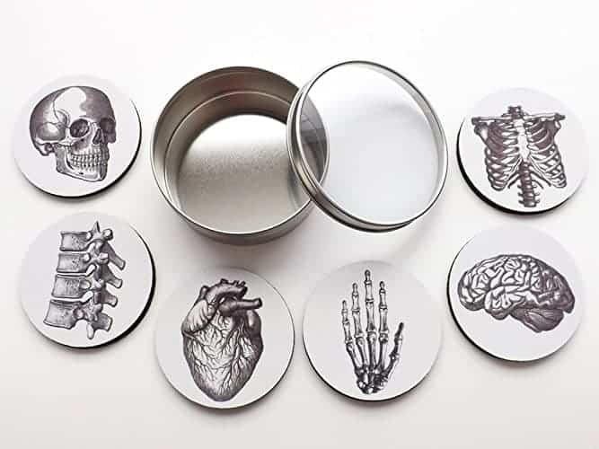 Keep rings on your fingers and not on your table with these anatomy coasters.