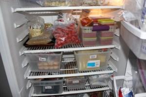 freezer bins for Home Food Storage