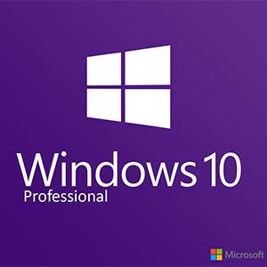 Hasil gambar untuk windows 10 professional